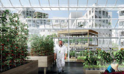 Panorama de l'agriculture urbaine