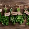 Certaines herbes aromatiques au même prix que le caviar